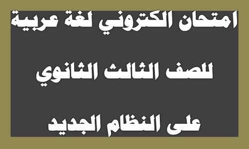 امتحان الكتروني لغة عربية للصف الثالث الثانوي